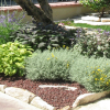 Foto giardini